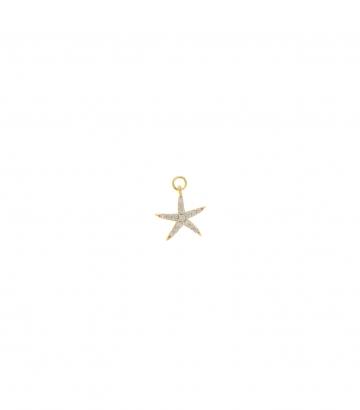 Charm Plata Chapado Dorado Estrella Mar Circonitas Miscellany Collection