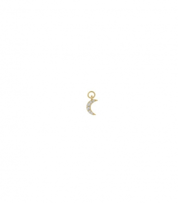 Charm plata dorada luna circonitas Miscellany Collection