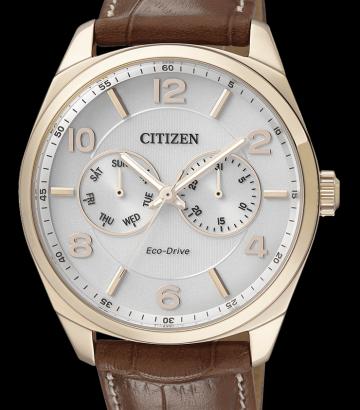 Reloj Citizen Eco-Drive caballero AO9024-16A